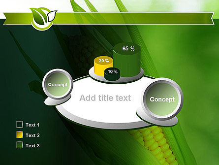 Corn On The Cob PowerPoint Template Slide 16