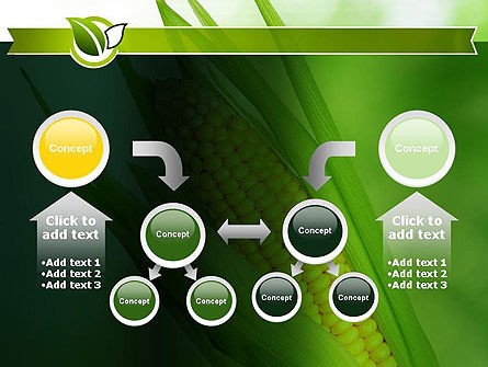 Corn On The Cob PowerPoint Template Slide 19