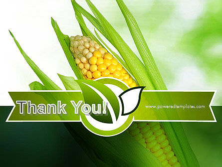 Corn On The Cob PowerPoint Template Slide 20