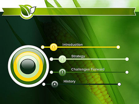 Corn On The Cob PowerPoint Template Slide 3
