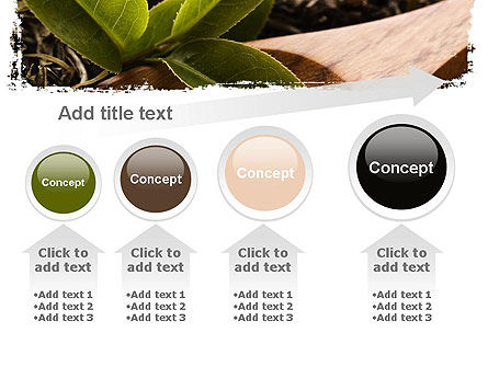 Flavored Tea PowerPoint Template Slide 13