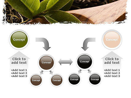 Flavored Tea PowerPoint Template Slide 19