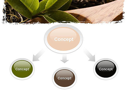 Flavored Tea PowerPoint Template, Slide 4, 11314, Food & Beverage — PoweredTemplate.com