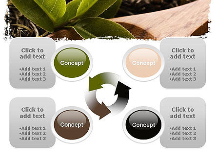 Flavored Tea PowerPoint Template Slide 9