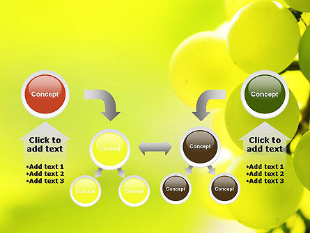 Wine Label PowerPoint Template Slide 19