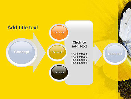 Butterfly on Sunflower PowerPoint Template Slide 17