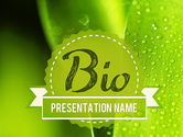 Nature & Environment: Drops of Dew on a Leaf PowerPoint Template #11337