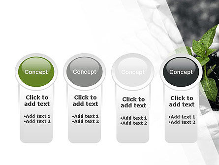 Sprout In Careful Hands PowerPoint Template Slide 5