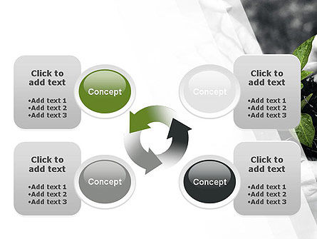 Sprout In Careful Hands PowerPoint Template Slide 9