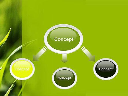 Green Grass Theme PowerPoint Template, Slide 4, 11368, Nature & Environment — PoweredTemplate.com