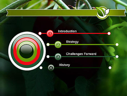 Ripe Tomatoes PowerPoint Template, Slide 3, 11371, Agriculture — PoweredTemplate.com