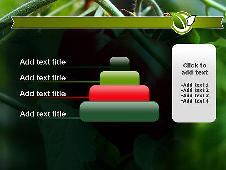 Ripe Tomatoes PowerPoint Template Slide 8