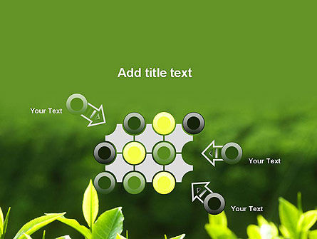 Young Tea Leaves PowerPoint Template Slide 10