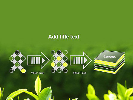 Young Tea Leaves PowerPoint Template Slide 9