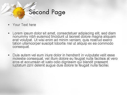 Beauty Theme PowerPoint Template, Slide 2, 11410, Nature & Environment — PoweredTemplate.com