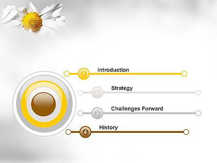 Beauty Theme PowerPoint Template, Slide 3, 11410, Nature & Environment — PoweredTemplate.com
