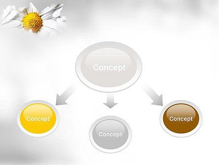 Beauty Theme PowerPoint Template, Slide 4, 11410, Nature & Environment — PoweredTemplate.com