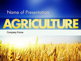 Agriculture: Agricultural Land PowerPoint Template #11461