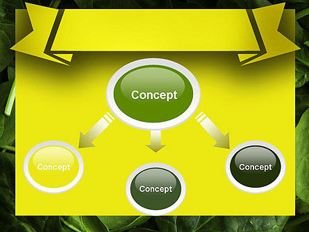 Spinach PowerPoint Template, Slide 4, 11463, Food & Beverage — PoweredTemplate.com