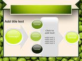 Green Peas PowerPoint Template#17