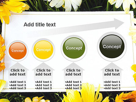 Greeting Card with Flowers PowerPoint Template Slide 13