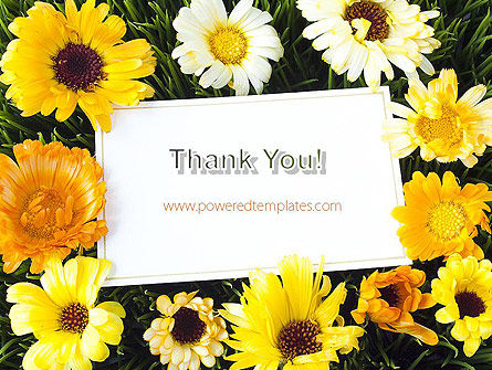 Greeting Card with Flowers PowerPoint Template Slide 20