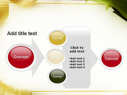Beautiful Greeting Card PowerPoint template Slide 17