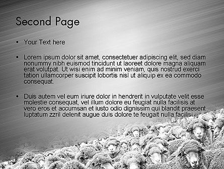 Flock of Sheep PowerPoint Template Slide 2