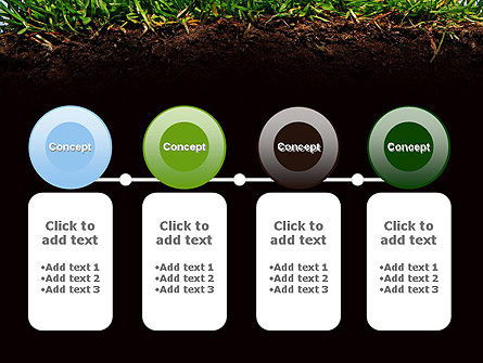 Soil Acidity PowerPoint Template Slide 5