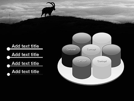 Chamois PowerPoint Template Slide 12