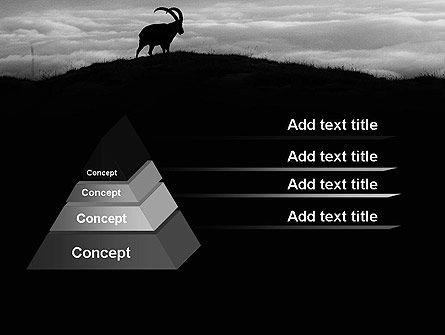 Chamois PowerPoint Template, Slide 4, 11777, Nature & Environment — PoweredTemplate.com