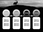 Chamois PowerPoint Template#5