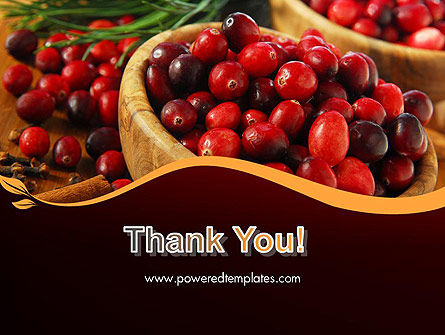 Cranberries PowerPoint Template Slide 20