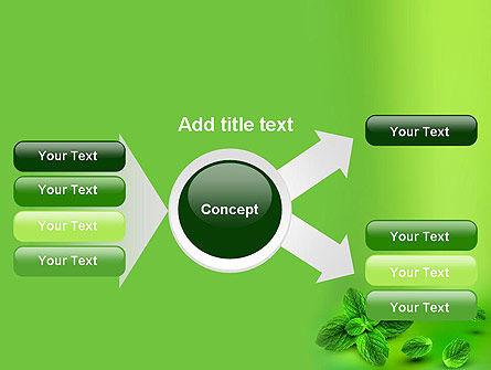 Mint Green Background PowerPoint Template Slide 15
