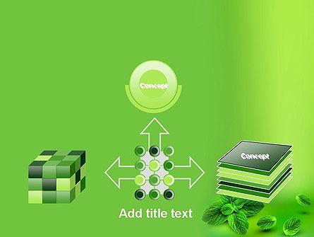 Mint Green Background PowerPoint Template Slide 19