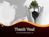 Hands Holding a Bonsai Plant PowerPoint Template#20