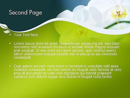 Breath of Spring PowerPoint Template, Slide 2, 12109, Nature & Environment — PoweredTemplate.com