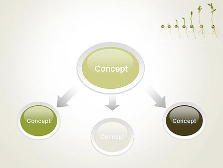 Seed Germination PowerPoint Template Slide 4