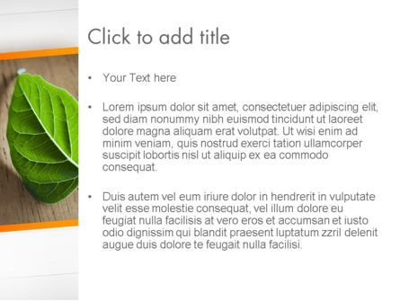 Turn Over a New Leaf PowerPoint Template, Slide 3, 12499, Consulting — PoweredTemplate.com