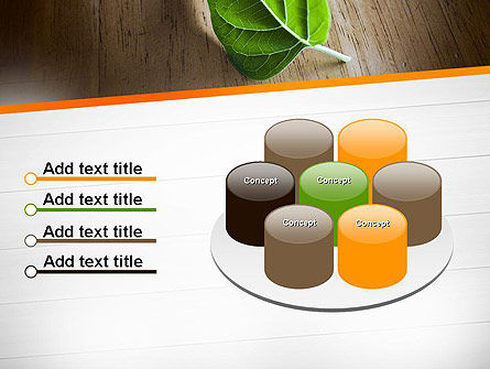 Turn Over a New Leaf PowerPoint Template Slide 12