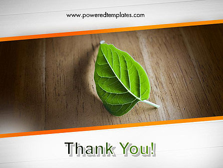 Turn Over a New Leaf PowerPoint Template Slide 20