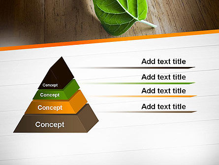 Turn Over a New Leaf PowerPoint Template, Slide 4, 12499, Consulting — PoweredTemplate.com