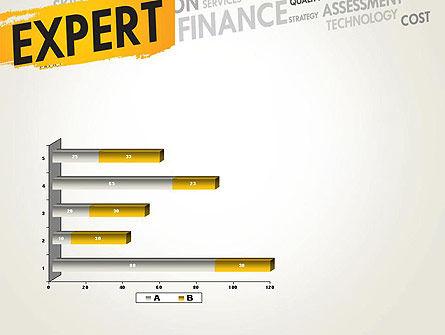 Business Expert PowerPoint Template Slide 11