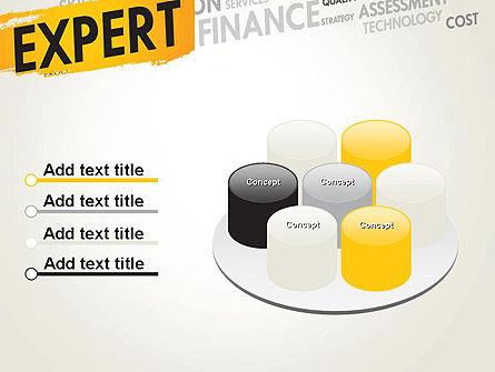 Business Expert PowerPoint Template Slide 12