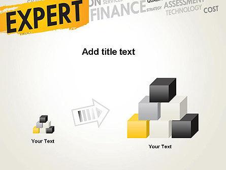 Business Expert PowerPoint Template Slide 13