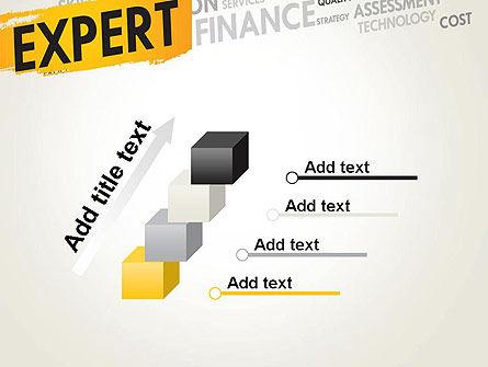 Business Expert PowerPoint Template Slide 14