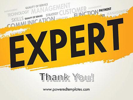 Business Expert PowerPoint Template Slide 20