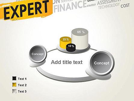 Business Expert PowerPoint Template Slide 6