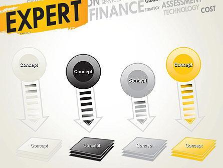 Business Expert PowerPoint Template Slide 8