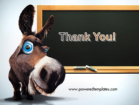 Funny Donkey PowerPoint Template Slide 20